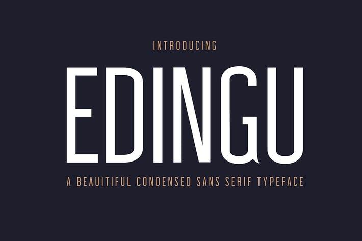 Thumbnail for Edingu Sans Serif Font Family