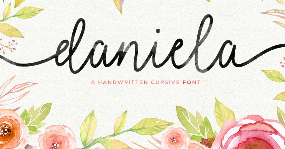 Download Daniela Script by Seniors_Studio