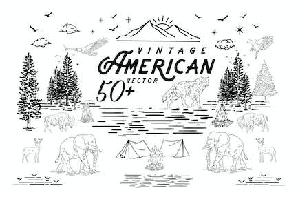 50 Amerikanischer Vektor