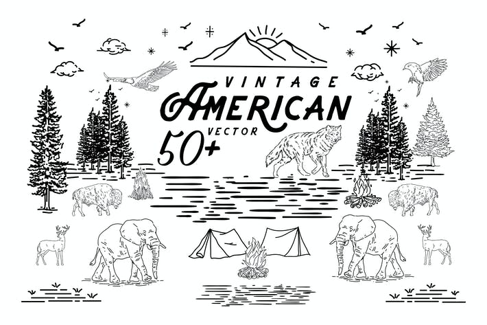 Thumbnail for 50 American Vector