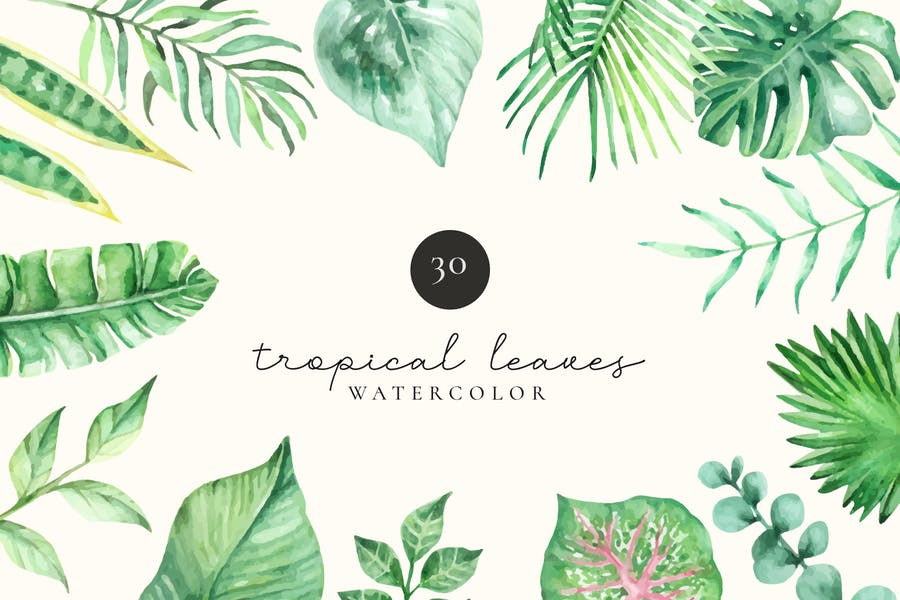 Tropical Leaves and Foliage Watercolor Set