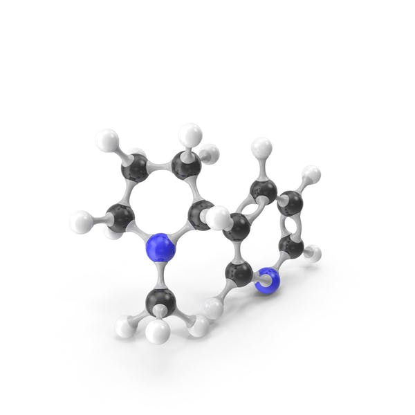 Nicotine Molecular Model