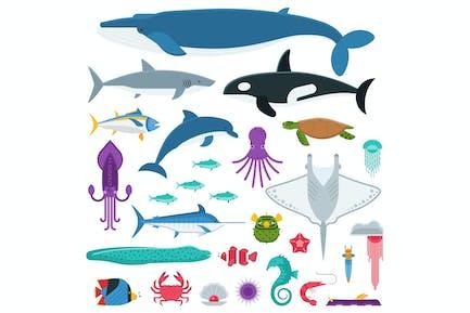 Underwater Animals and Sea Creatures