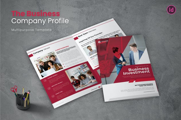 Business Investmen Company Profile