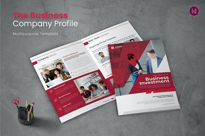 Thumbnail for Business Investmen Company Profile