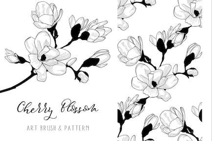 Cherry Blossom. Floral Design Element. Art Brush.