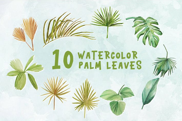 Thumbnail for 10 Watercolor Palm Leaves Illustration Graphics