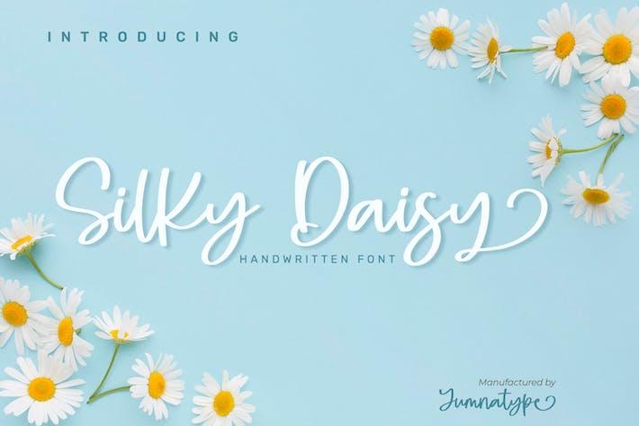 Thumbnail for Silky Daisy