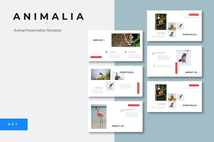 Thumbnail for Animalia - Animal Keynote Presentation Template