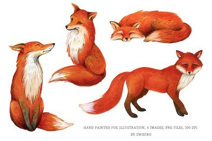 Ilustración de zorro, acuarela