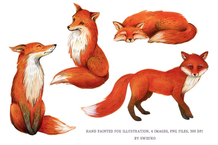Thumbnail for Fox Illustration, watercolor