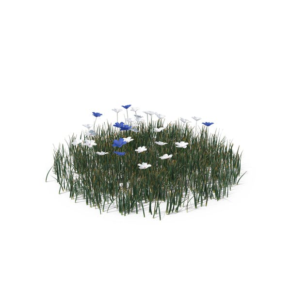 Thumbnail for Simple Grass