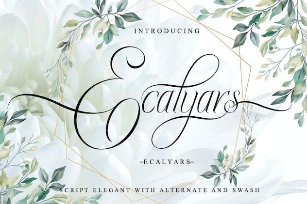 Ecalyars
