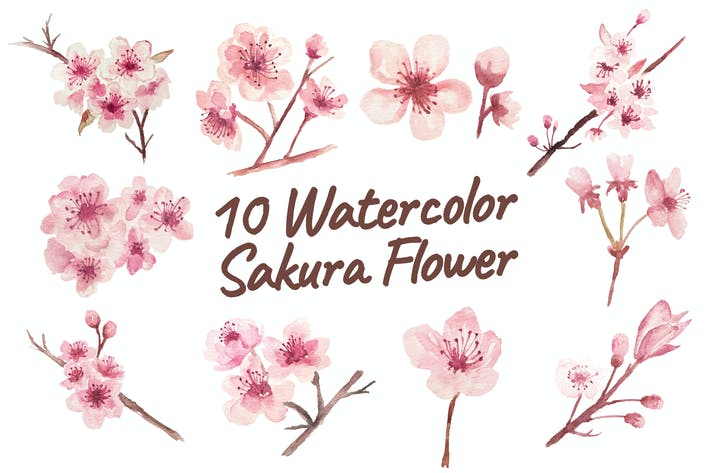 Thumbnail for 10 Watercolor Sakura Flower Illustration Graphics