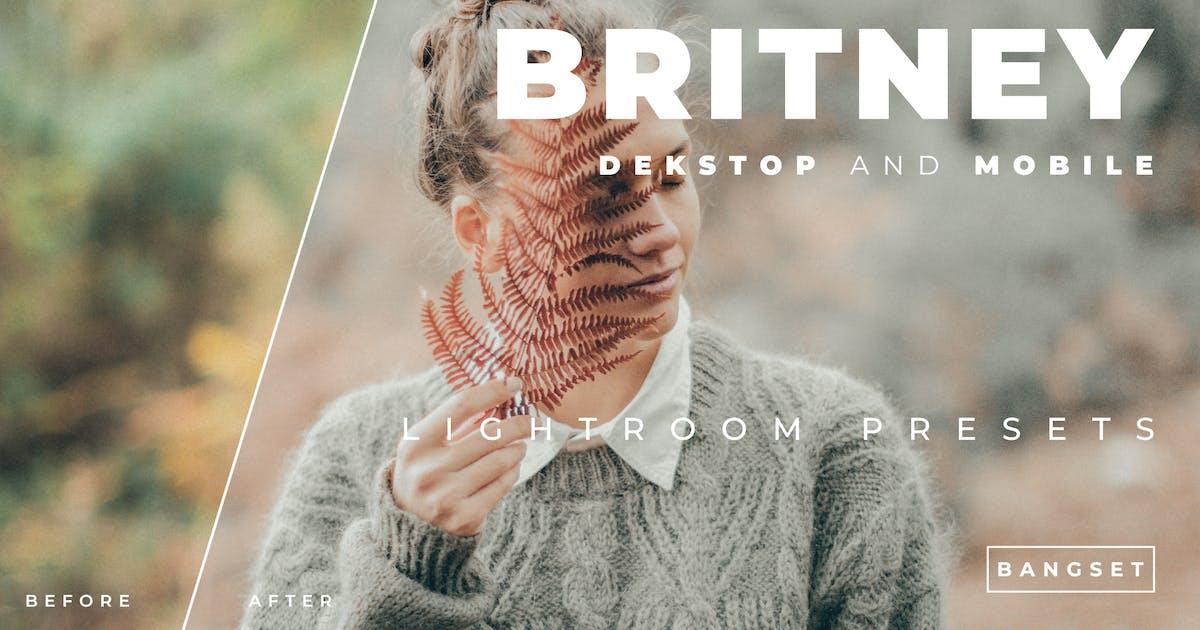 Download Britney Desktop and Mobile Lightroom Preset by Bangset