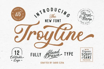 Troyline - Font Duo (+Logotype)