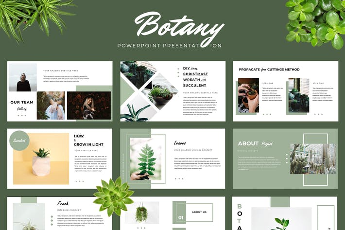 Thumbnail for Botany Powerpoint Presentation