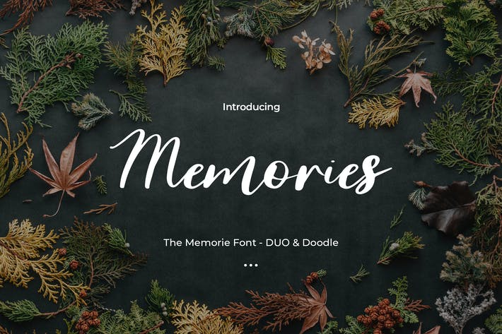 Thumbnail for The Memorie Font - DUO & Doodle