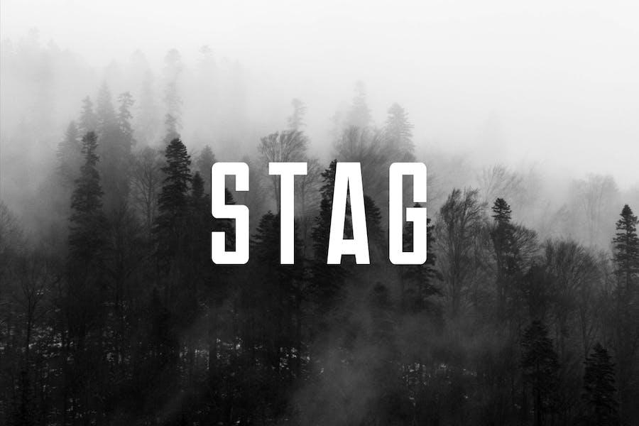 STAG - Modern Display / Headline / Logo Typeface