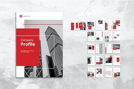 Company Profiles for Professional