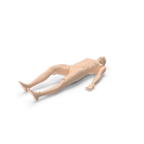 CPR Первая помощь Обучение Манекен Укладка Поза