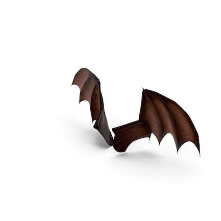 Drachen-Flügel