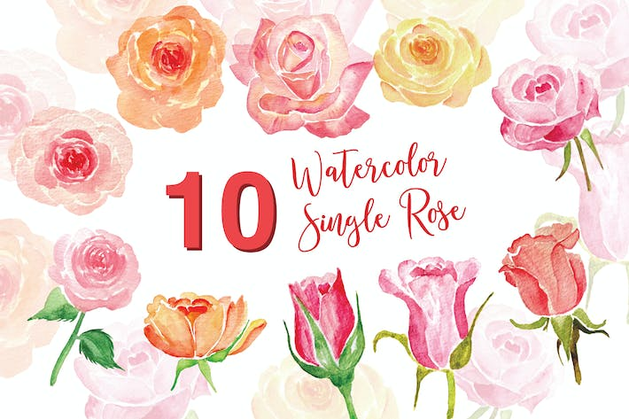 Thumbnail for 10 Watercolor Single Rose Illustration