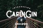 Caringin