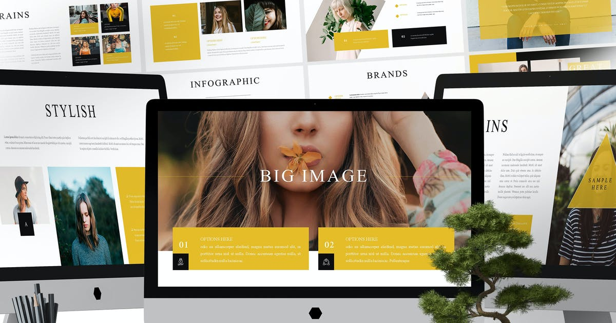Download Moreno - Powerpoint Template by aqrstudio