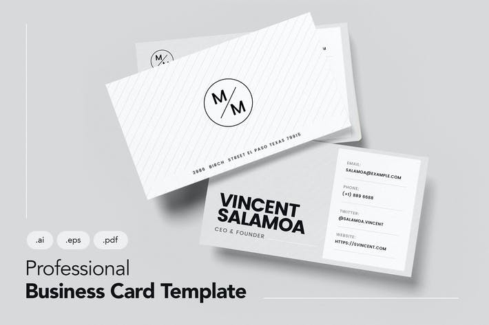 Thumbnail for Professional and Clean Business Card V.2