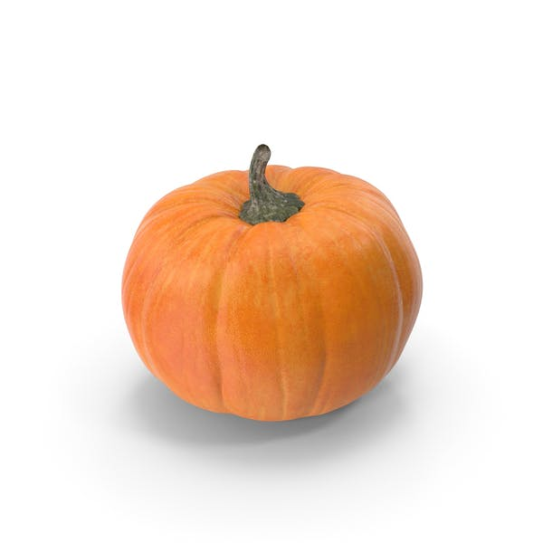 Cover Image for Pumpkin Patch