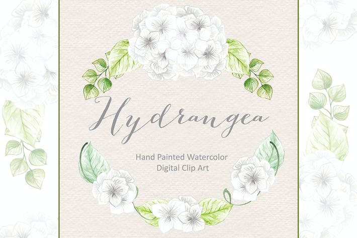Thumbnail for Watercolor Hydrangea flowers clipart