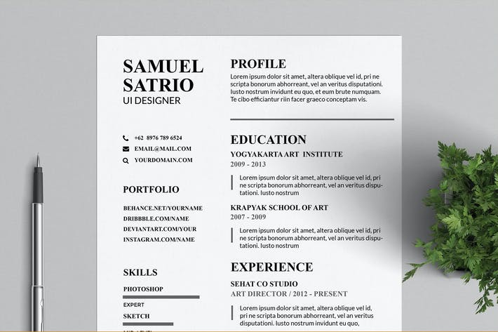 Thumbnail for Pros Resume & CV Templates