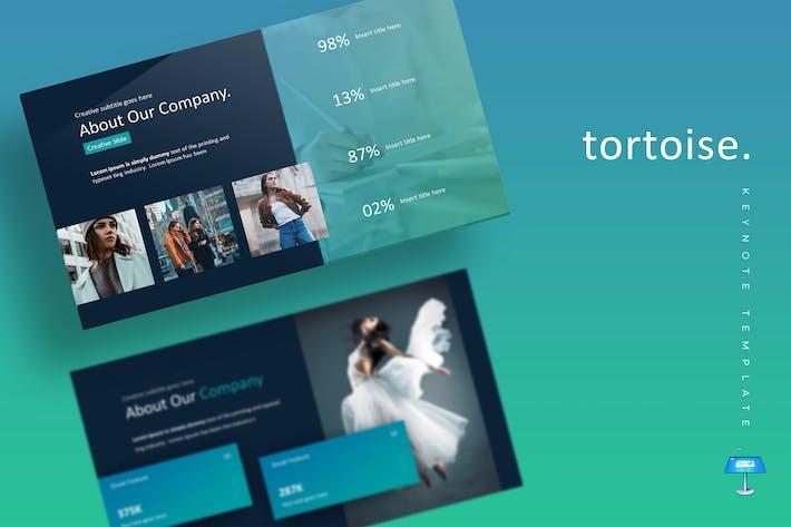 Thumbnail for Tortoise - Keynote Template