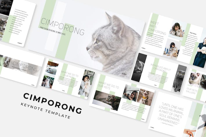 Cover Image For Cimporong - Keynote Template
