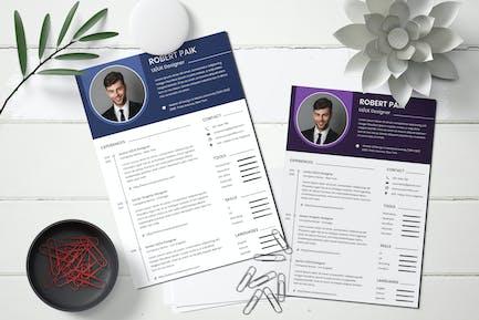 Professional CV Resume Template