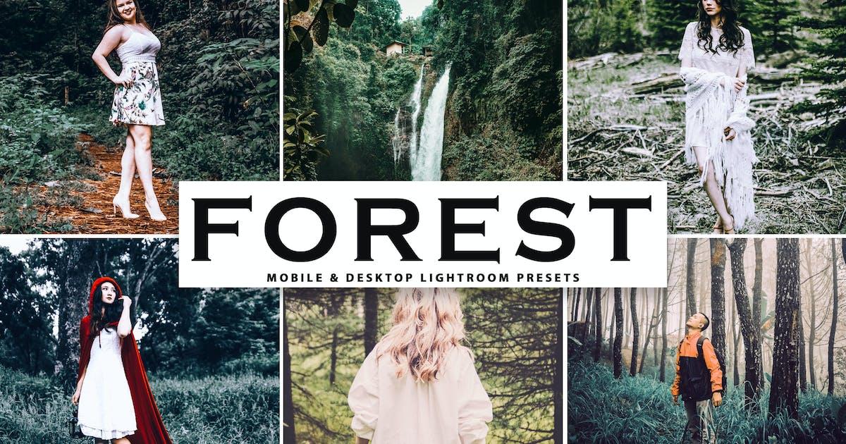 Download Forest Mobile & Desktop Lightroom Presets by creativetacos