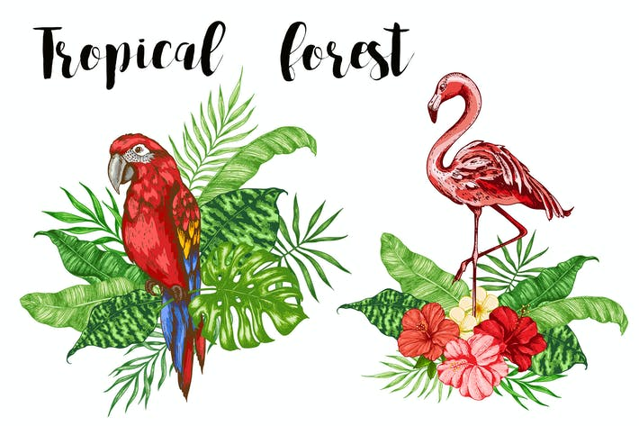 Thumbnail for Tropical Forest Clip Art