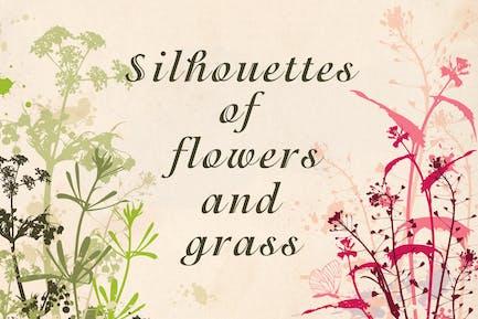 Blumen und Gras Silhouetten