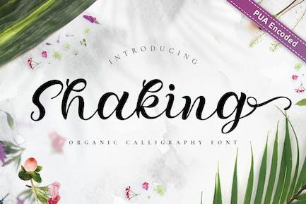 Shaking - Fuente de caligrafía orgánica