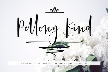 Pellony Kind Lindo Script