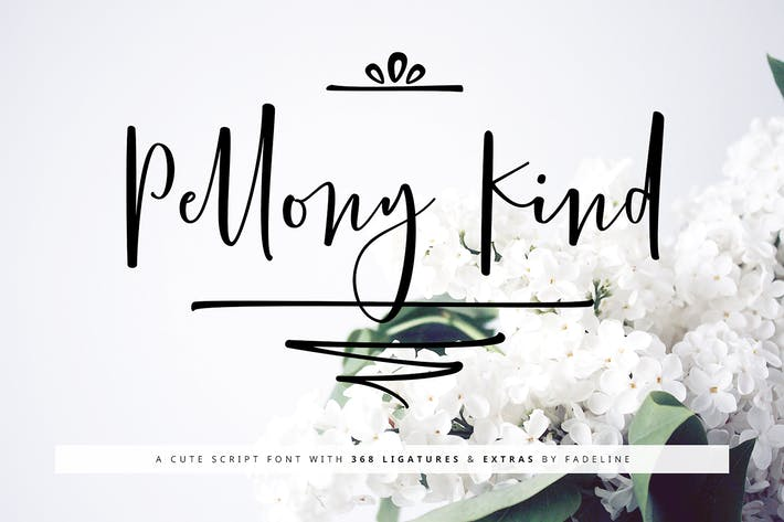 Thumbnail for Pellony Kind Cute Script