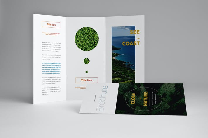 Cover Image For Natural Trifold Brochure