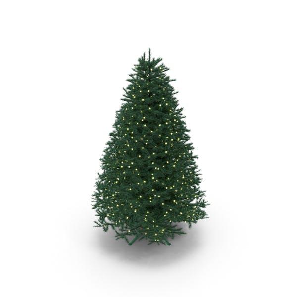 Voller Weihnachtsbaum