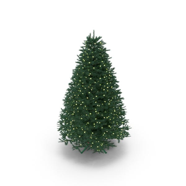 Cover Image for Full Christmas Tree