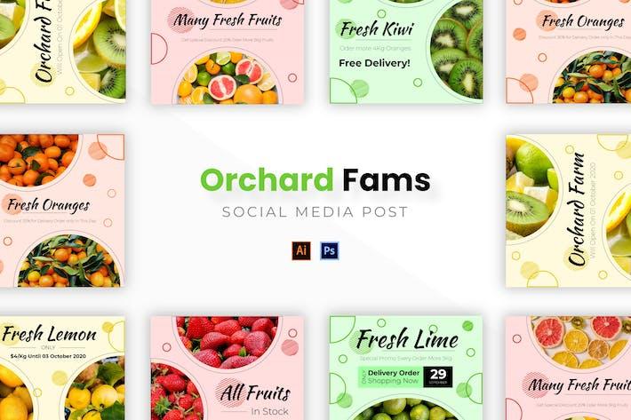 Thumbnail for Orchard Farm Socmed Post