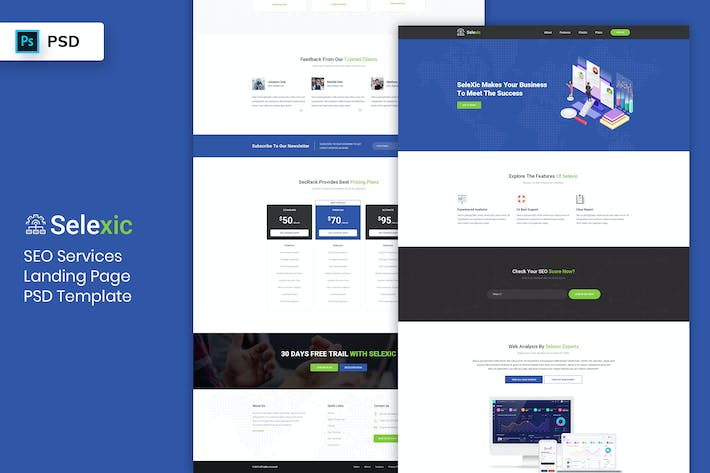 Thumbnail for SEO Service - Landing Page PSD Template