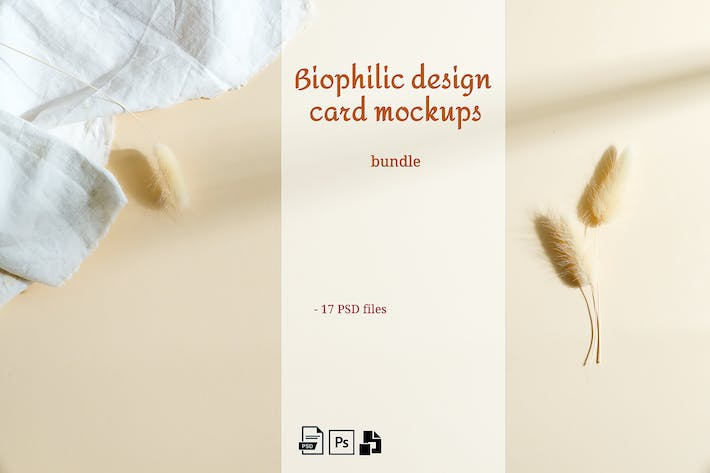 Thumbnail for Biophilic design cards Mockup