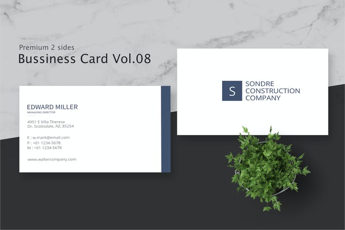 Thumbnail for Business Card Pro V.008