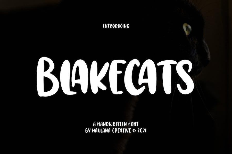 Blakecats Handwritten Font
